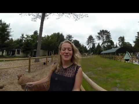 Beleef de Pony Vakantie in Het Meerdal in 360°