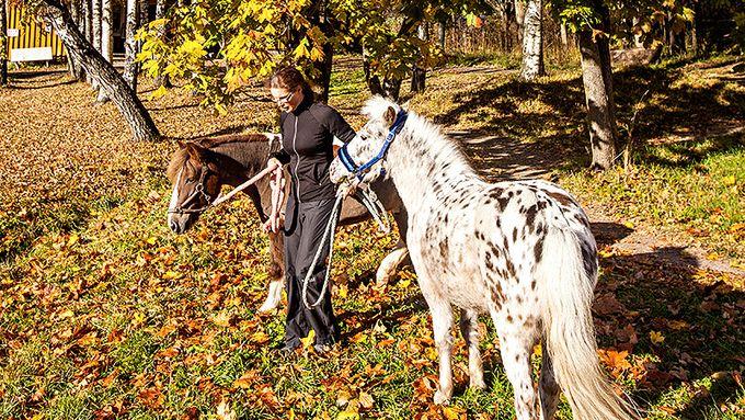 Espoonlahden ratsastuskoulu