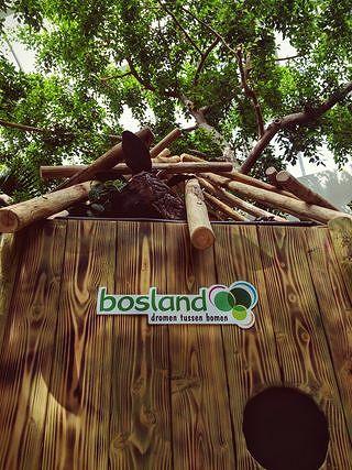 Gluur door de gaten en ontdek Bosland