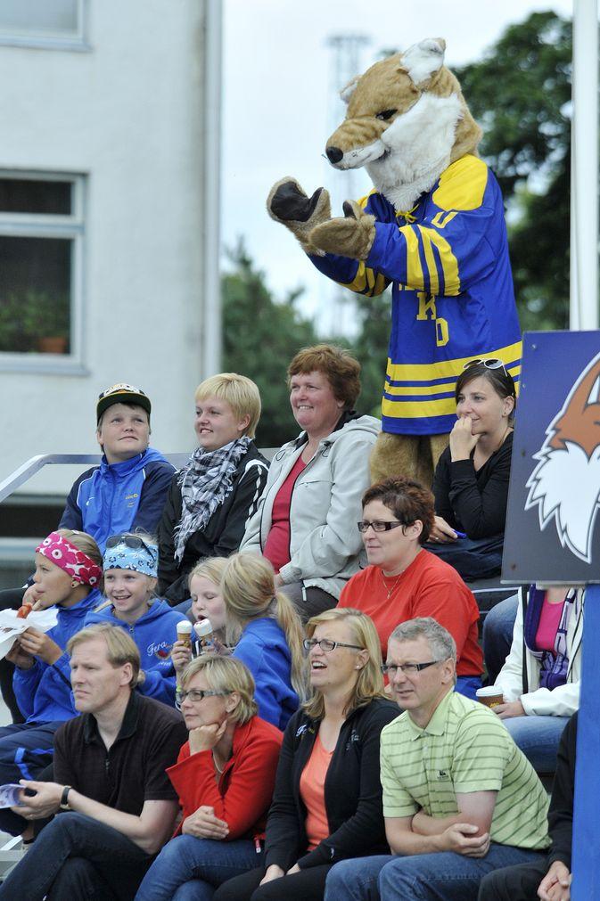 Katsojien pitää aina olla valppaita, sillä kettu hyppää herkästi mukaan kannustuslauteille, kuten Otanlahdessa vuonna 2012. Kuva: Joonas Salo