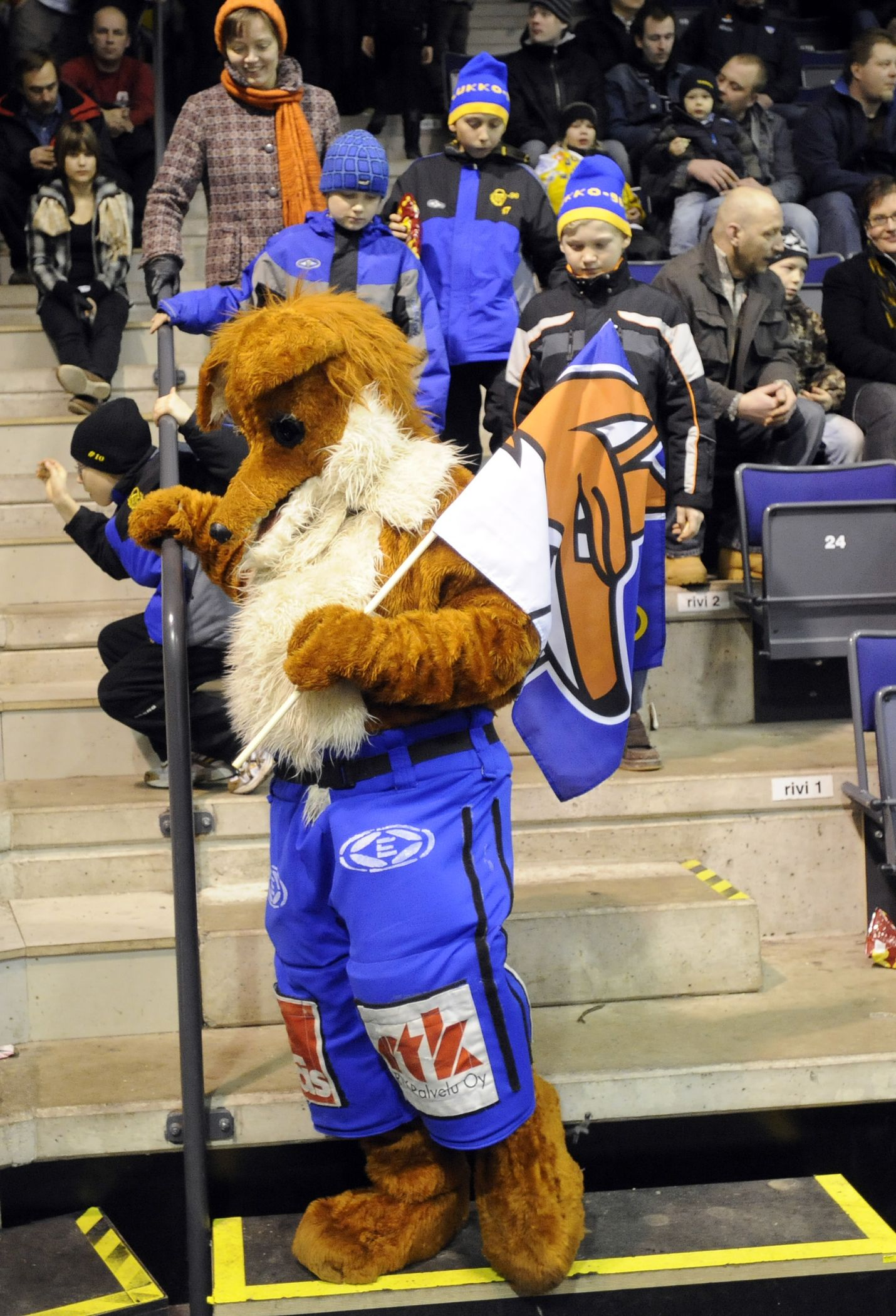Joulukuussa 2008 Eetu-kettu piti Lukon lippua korkealla hieman nykyistä paksummassa turkissa. Kuva: Pekka Lehmuskallio