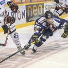 Toni Koivisto säntää kiekon perään.Kuva: Pekka Lehmuskallio