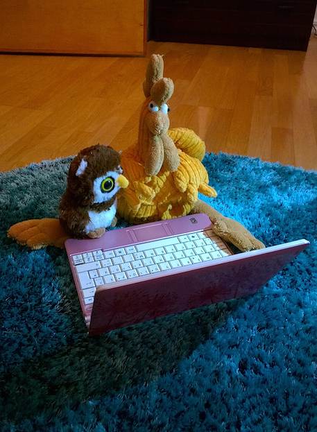 """Pair Programming is a Hoot"" by Pinja Turunen can be reused under the CC BY license.​​​"