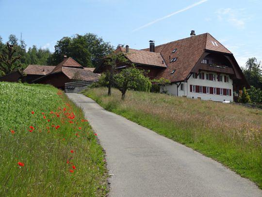 Der Weg führt an vielen schönen Bauernhöfen vorbei.