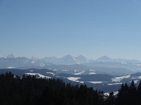 Bergpanorama satt - kurz vor der Blaseflue.