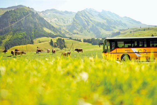 Rund 700 Postautos sind schweizweit mit einem Dreiklanghorn ausgerüstet. (Foto: PostAuto)
