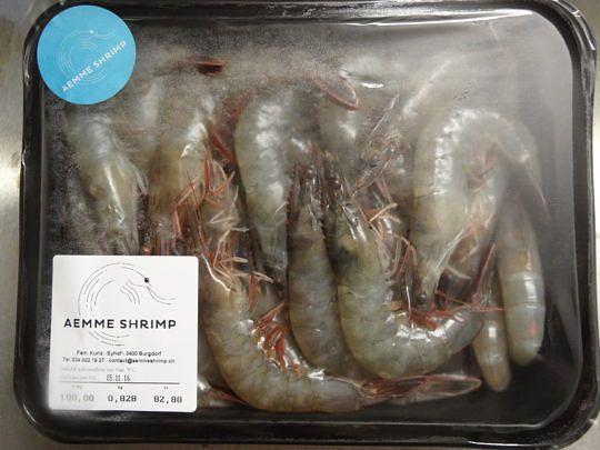 Fangfrische Shrimps aus Burgdorf – für Private und Gastronomiebetriebe.