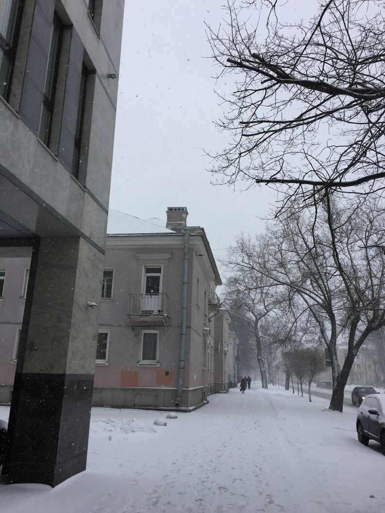 A view of Savushkin Street from the front of the troll factory.​​