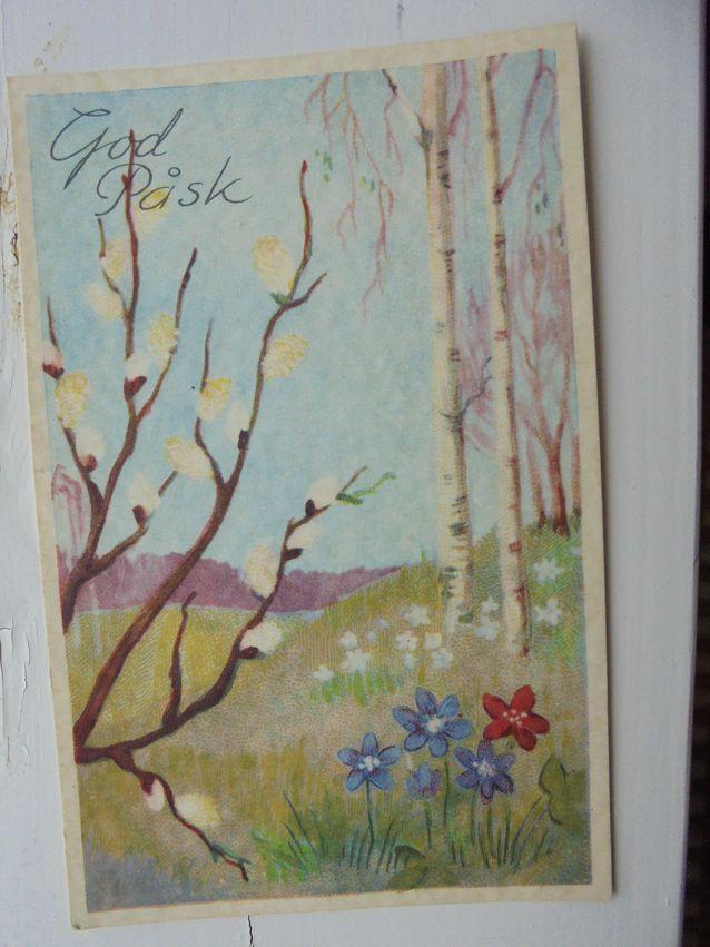"""Pajunkissat ovat pohjoinen vastike palmunlehdille. Ne symbolisoivat uuden elämän alkua. Tämän Postikortin tervehdysteksti: """"Måtte våren snart med blommor och med blader och med solens sken dig göra frisk och glader."""""""