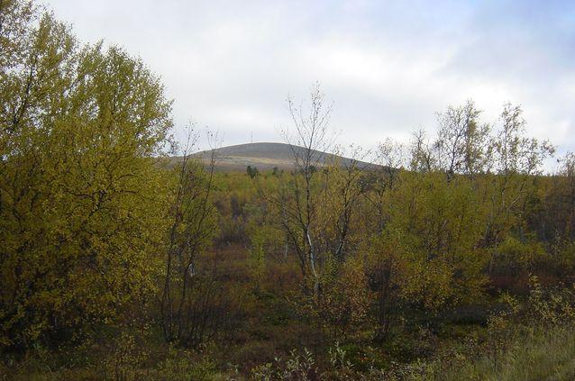 Ailigas-pyhätunturi Utsjoen kunnan Karigasniemen kylässä. Kuva: Irja Seurujärvi-Kari
