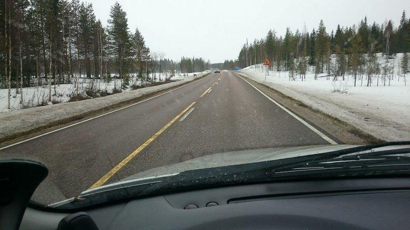 Neljän poron tokka kirmasi tien yli Vikajärvi-Kemijärvi tieosuudella. Kännykkäkameran optiikka olisi vaatinut ehkä kuvan lähempää...Aamun aurinkopaiste vaihtui iltapäivän lumisateeksi.