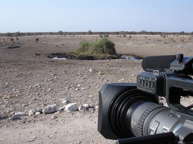Janne Hopsun kamera tähtää eläinten juottopaikalle Etoshassa.