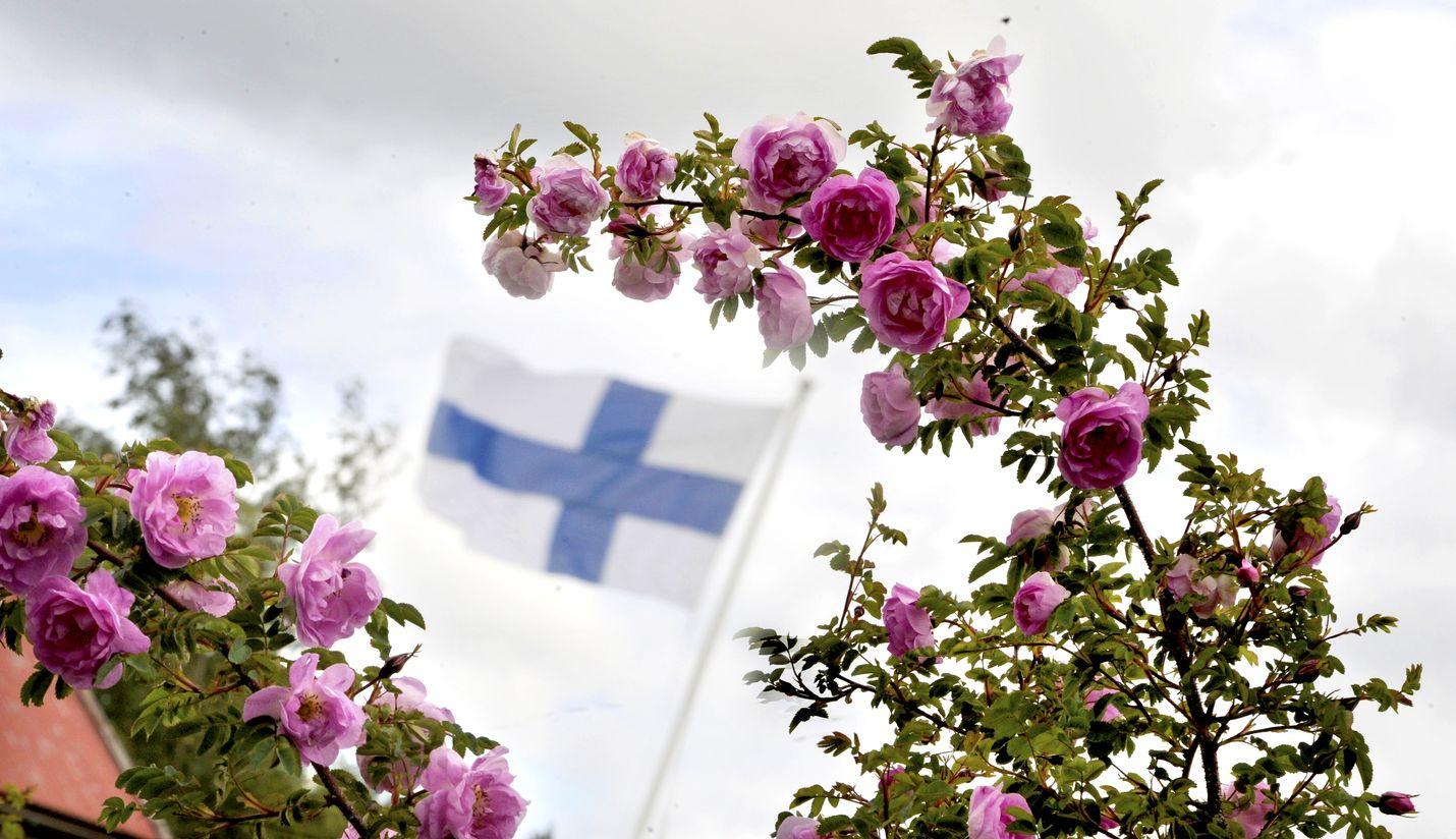 Hyvää juhannusta! Kuva: LS-arkisto/Esa Urhonen