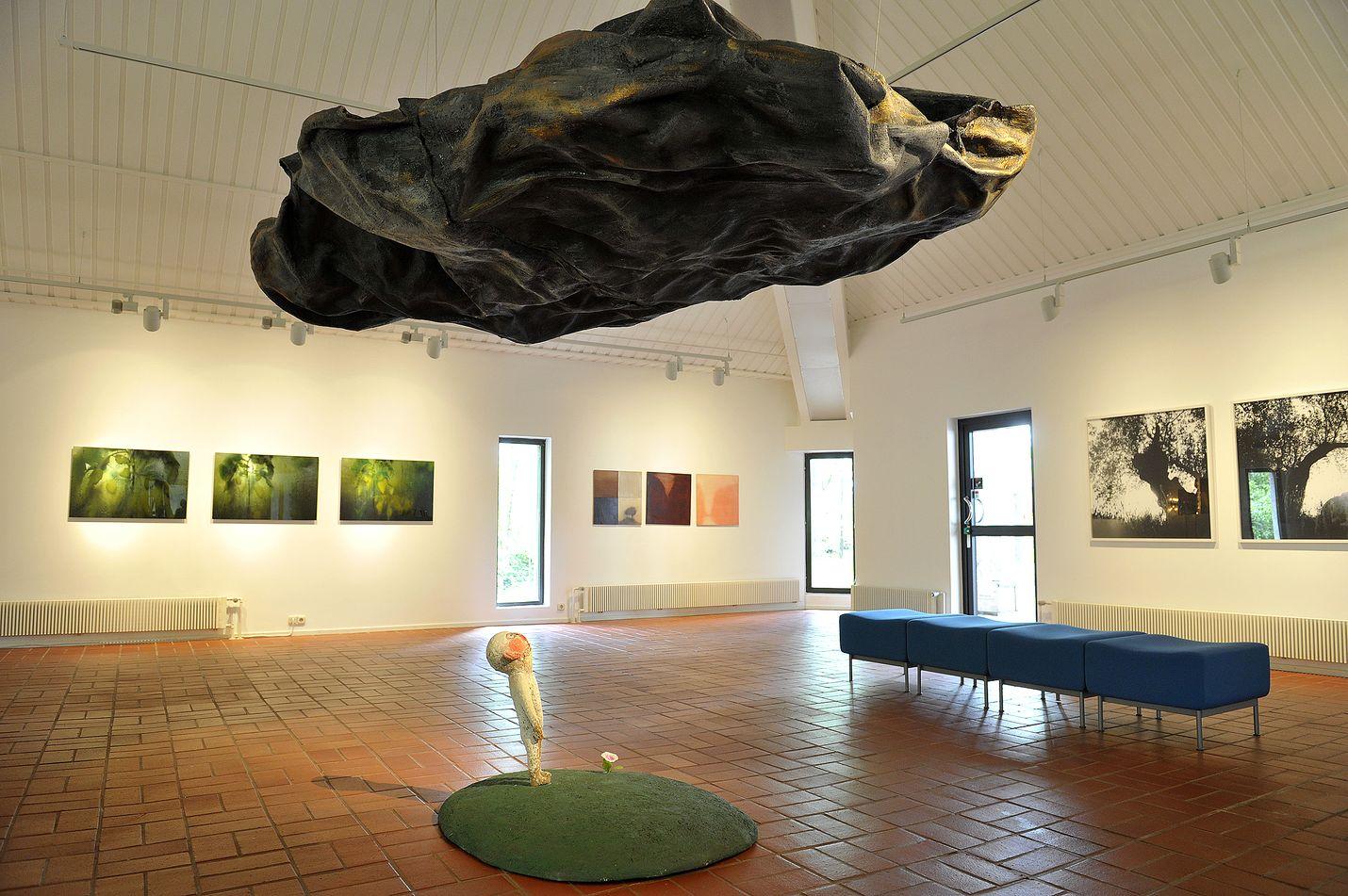 Tommi Toijan Taivaan kansi on esillä Teresia ja Rafael Lönnströmin kotimuseon galleriassa.