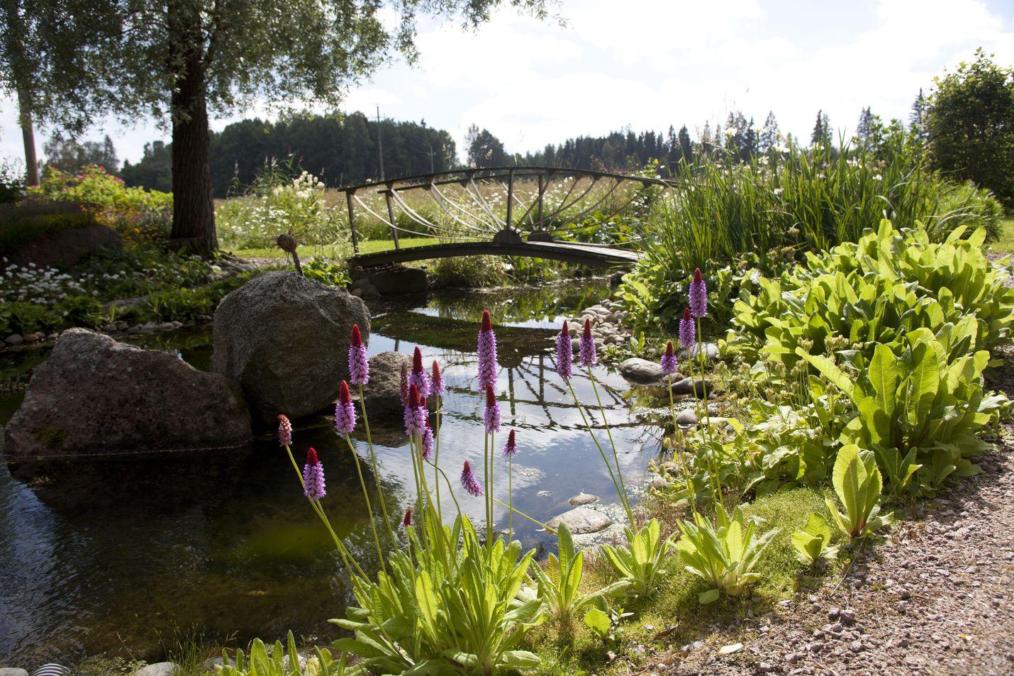 Avoimet puutarhat -tapahtuma järjestetään jo neljättä kertaa. Kuva: Puutarhaliitto