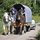 Kari Koskinen (vas.) ja Asko Hartman tekivät hevosvaelluksen Padasjoelta Raumalle elokuussa. Matkaa vaellukselle tuli noin 300 kilometriä. Kuva: Juha Sinisalo