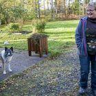 Lonsin Avainkimpunkadulla asuva Liisa Korhonen ja koiransa Tinka uskovat, etteivät Varustajavaheeseen saapuvat pakolaiset paljon tule heitä häiritsemään. Asiaa on kuitenkin pohdittu naapurien kesken. Kuva: Esa Urhonen