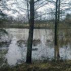 Runsaat sateet ovat synnyttäneet talvitulvia muun muassa Eurajokivarressa. Kuva: Marjo Nieminen