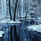 Maisema ehti olla päivän-pari jo vähän talvinen, vaikka vedet pysyivätkin sulina. Veden runsaus  on näkynyt kaikkialla. Kuva: Sanna Lujala