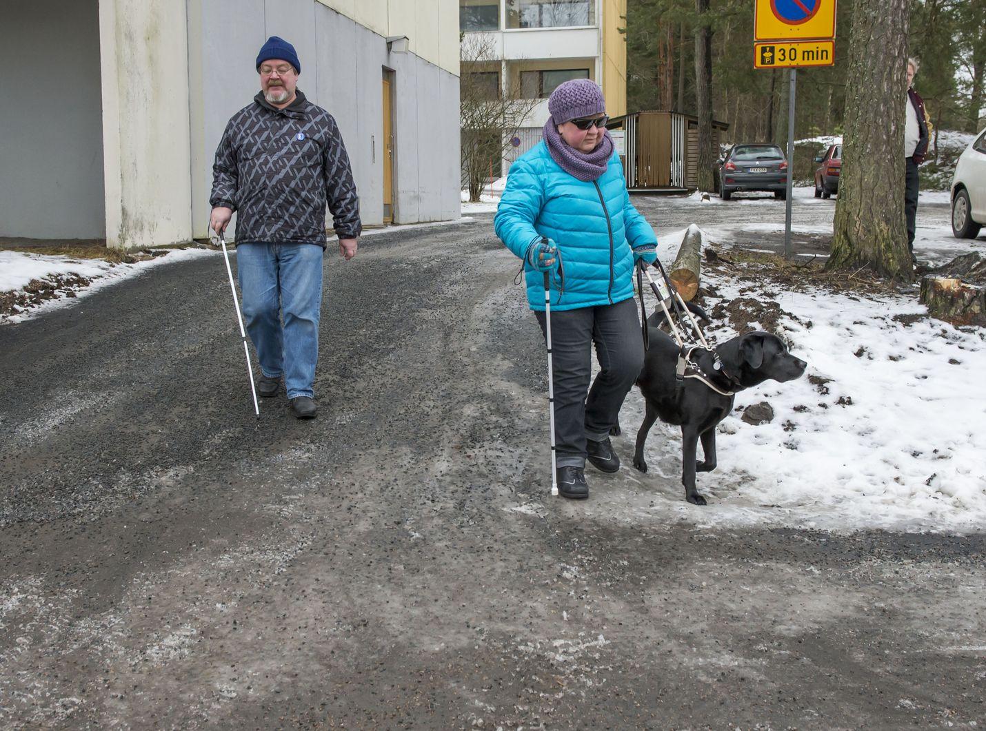 Matti Syrjälä, Katja Arvonen ja opaskoiransa Tintti liikkuvat päivittäin useita kilometrejä. Näkövammaiselle pariskunnalle talven liukkaus ja lumipenkat aiheuttavat omat vaikeutensa.