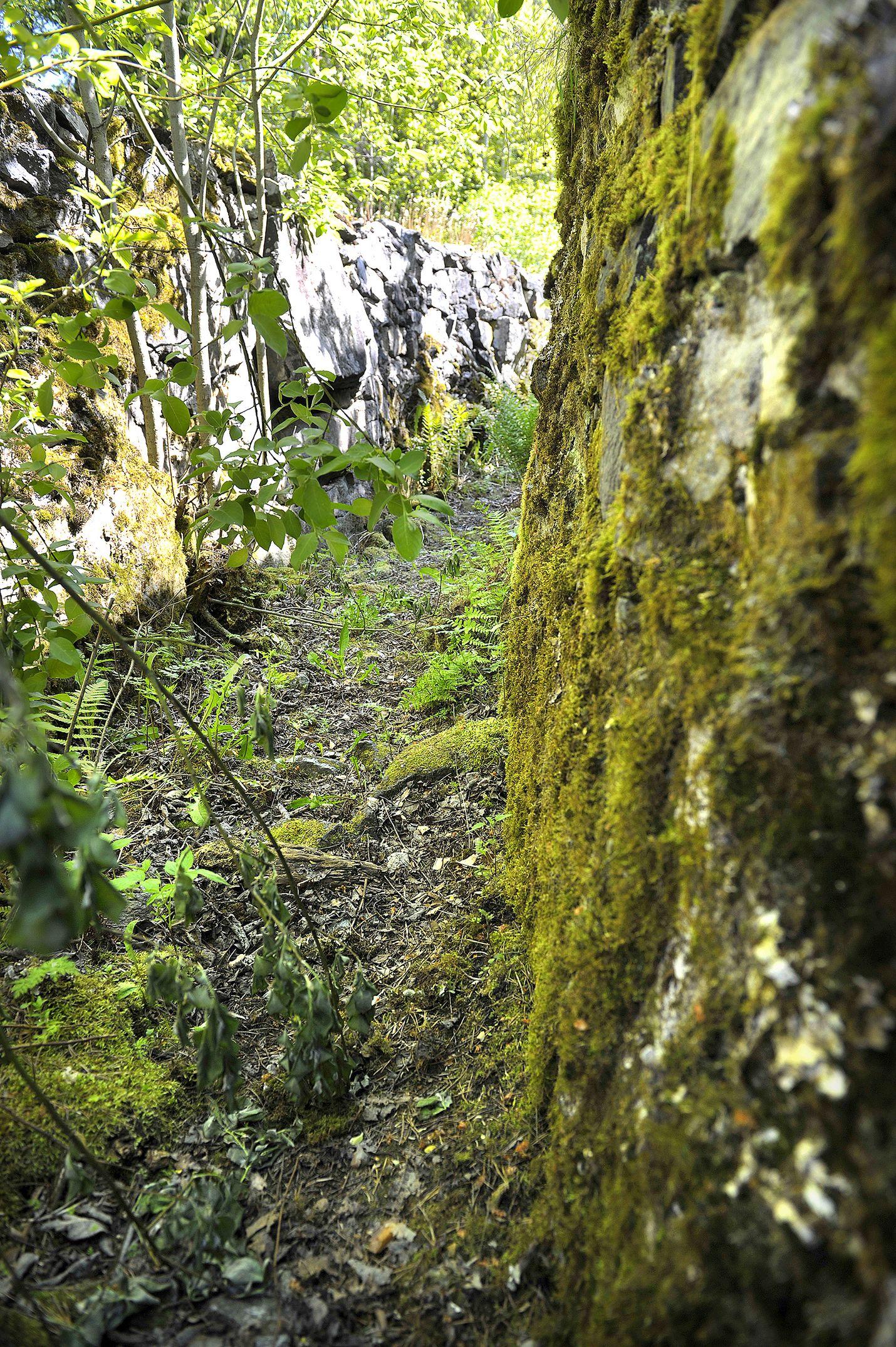 Tällä hetkellä valleissa ei näy valleissa ei näy roskia, mutta ne ovat kuitenkin paikoin pensaiden peitossa. Arkeologi Leena Koivisto kaipaisi paikalle myös sen historiasta kertovia kylttejä.