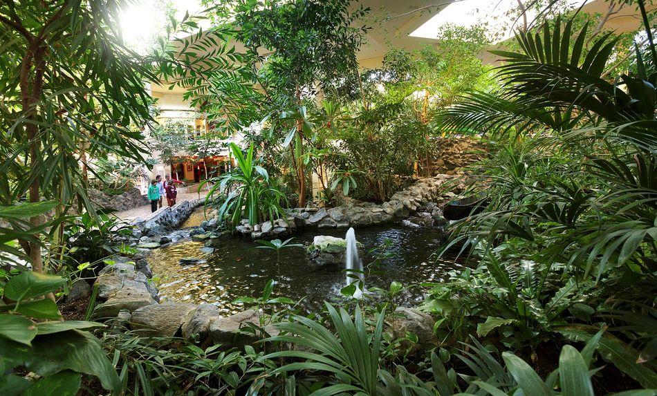 Tropische Welt: der Market Dome bei Center Parcs