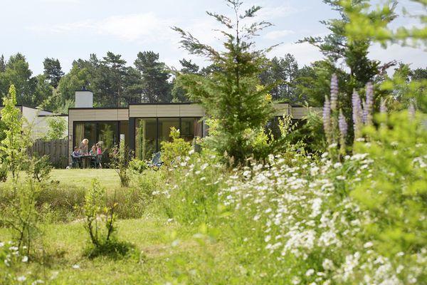 Piet Derksen, Gründer von Center Parcs, hatte einen Traum: das Vereinen aller Bedürfnisse von Urlaubern an einem einzigen Ort inmitten der Natur.