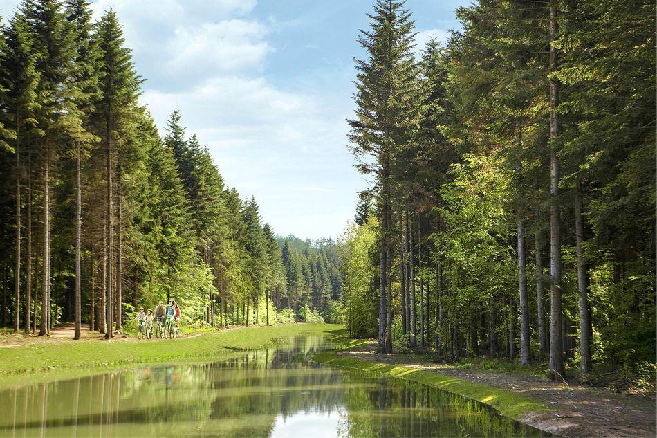 Center Parcs Les Trois Forêts ist umgeben von hunderten Hektar Wald