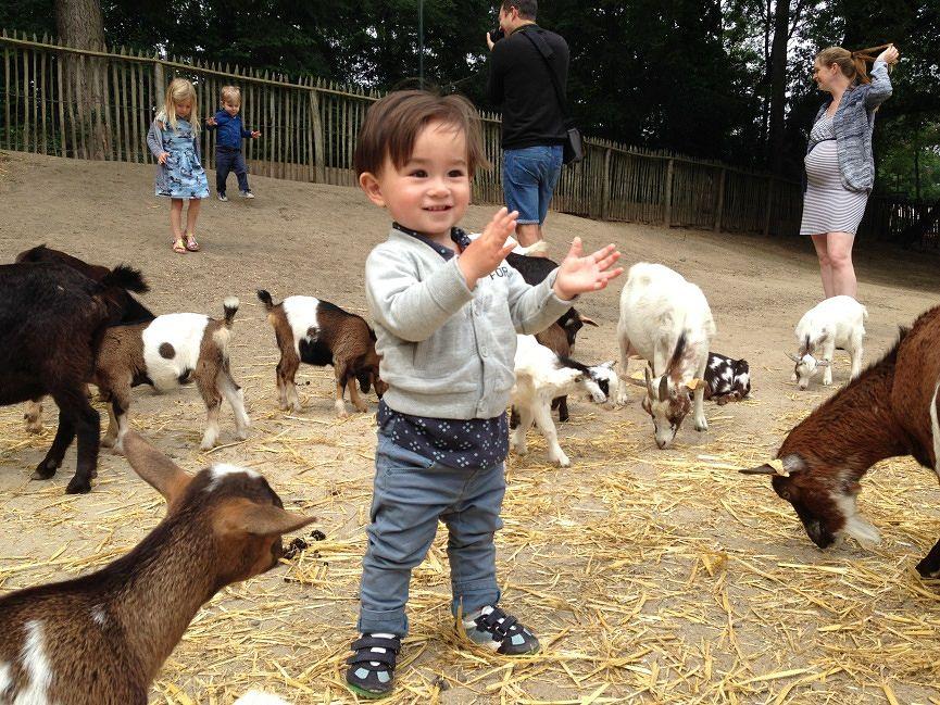 Endlich trocken: Raus auf den Kinderbauernhof!