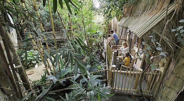 Ein echtes Stück Dschungel: der Jungle Dome in Het Heijderbos