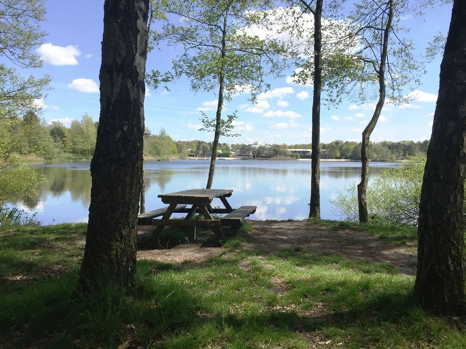 Picknickplatz 1 in Het Meerdal: am See im Schatten