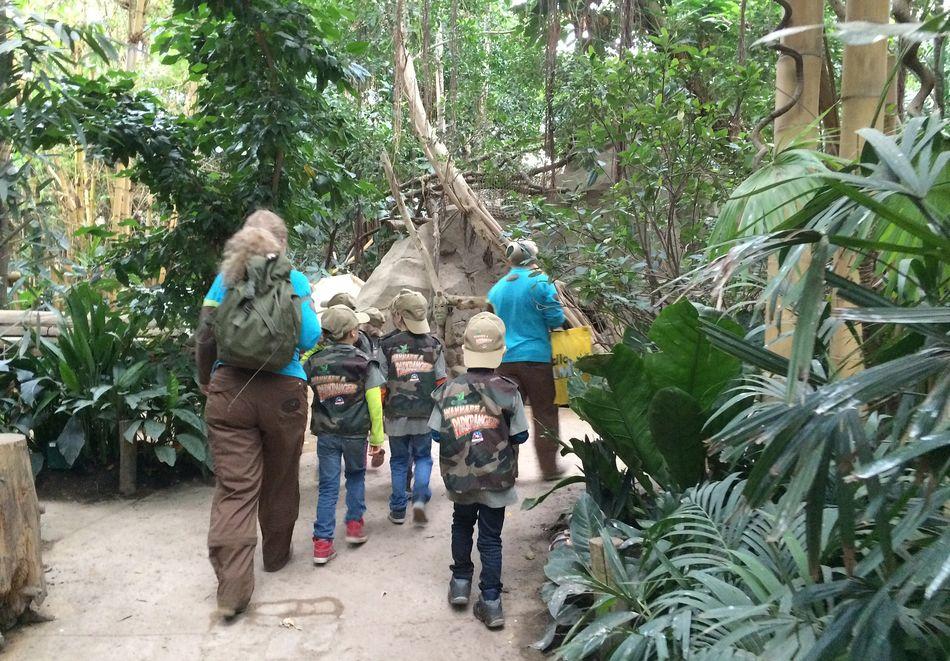 Wannabe ein Park-Ranger: Entdeckungsreise im Dschungel