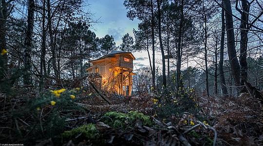 Top 4 des maisons insolites en forêt
