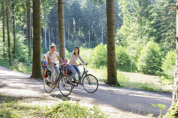 Top 5 des randonnées autour du Domaine du Lac d'Ailette