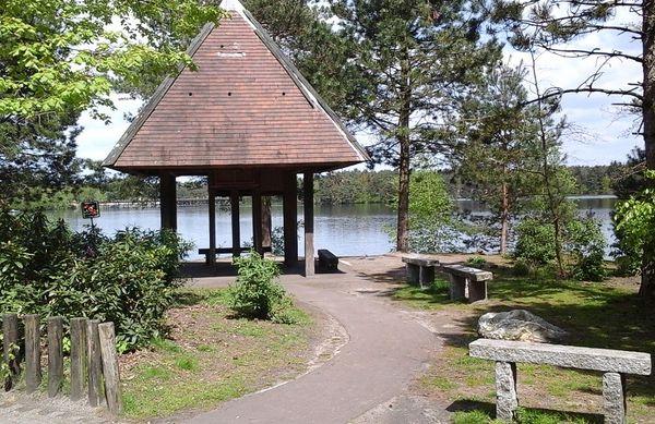 Les trois plus beaux endroits pour pique-niquer à De Vossemeren