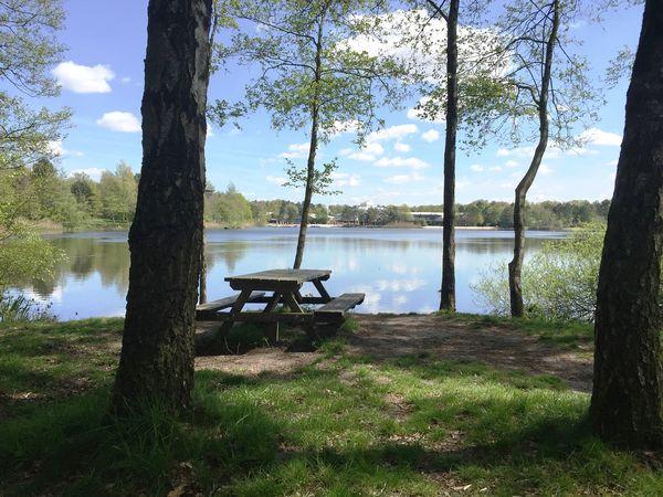 Les trois plus beaux endroits pour pique-niquer à Het Meerdal