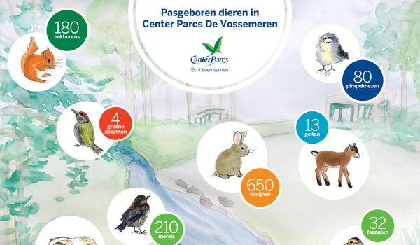 Pasgeboren dieren in De Vossemeren