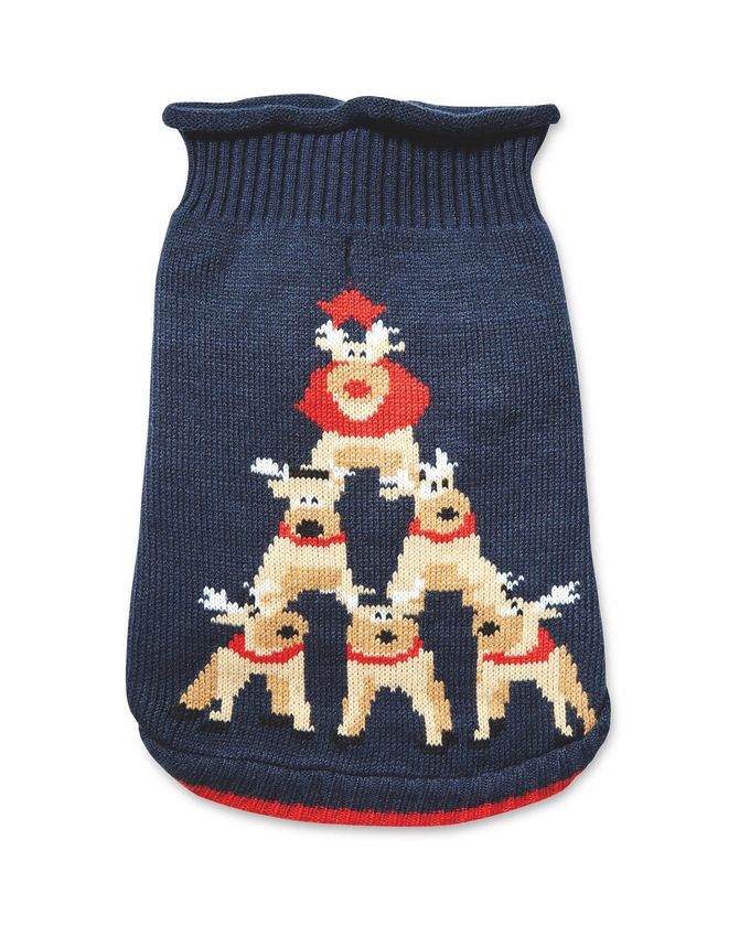 Aldi pet Christmas jumper