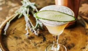 Garden Martini Cocktail Recipe | Gin Coupe