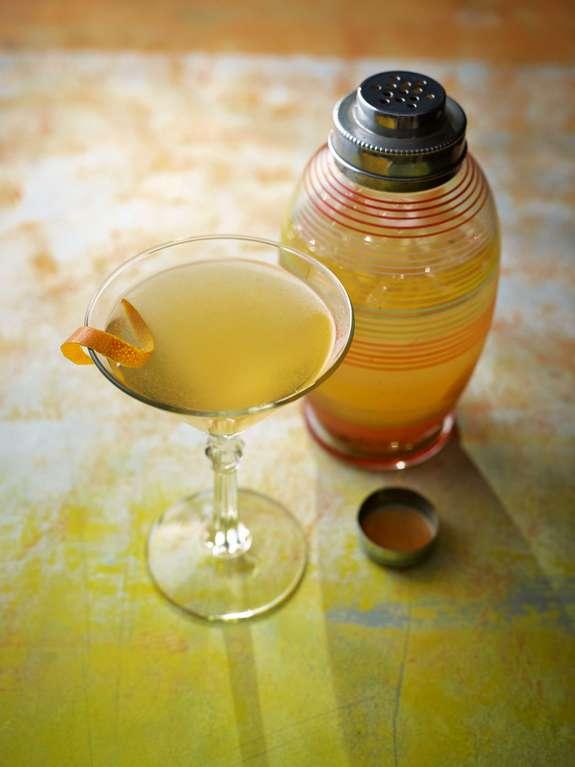 Ainsley Harriott's Bitter Orange and Cardamom Martini