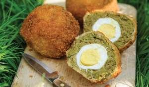 Falafel Eggs