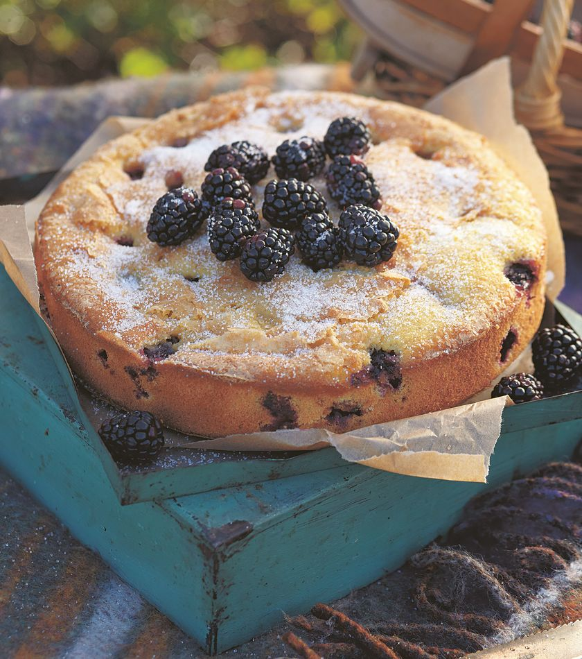 blackberry cake easy baking recipe
