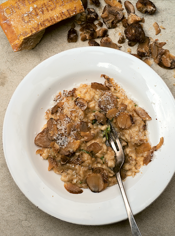 best risotto recipes chestnut and truffle risotto angela hartnett