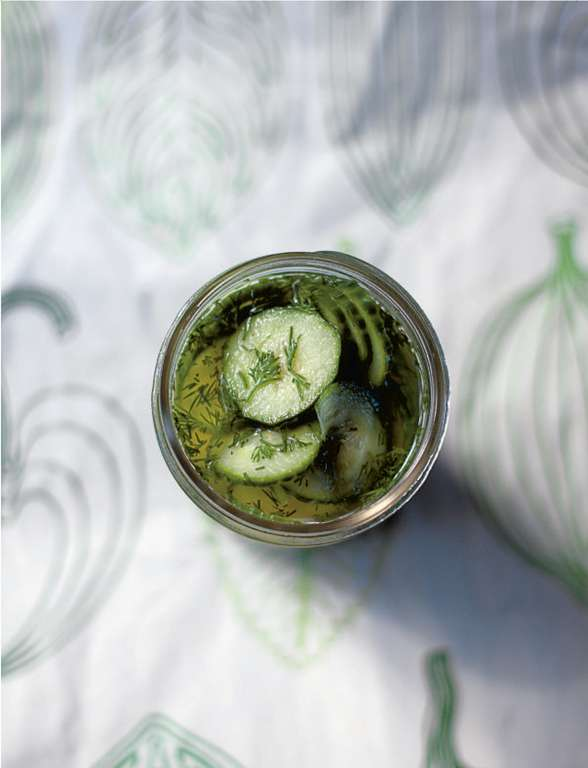 Dill-Marinated Cucumber (Inglad Gurka med Dill)