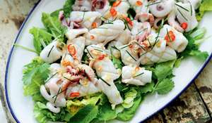 Hot and Sour Squid Salad with Chilli, Lime Leaf, Mint and Coriander