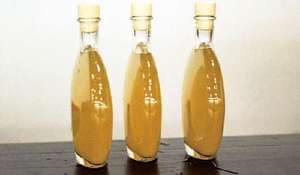 Ginger Beer from The Groundnut Cookbook