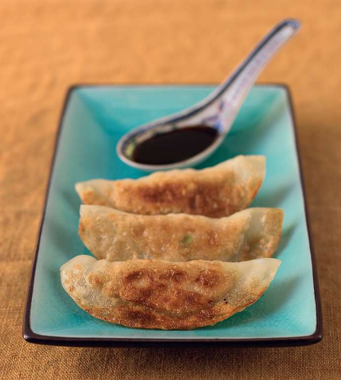 Chicken and Leek Magic Potstickers