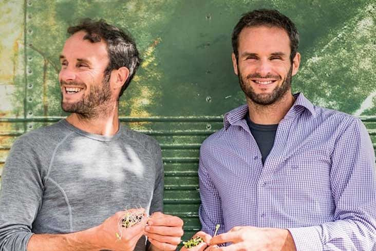 How to go vegan in 2021 - tips from Stephen and Dan Flynn