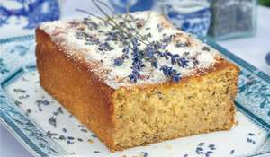 Lemon and Lavender Drizzle Cake