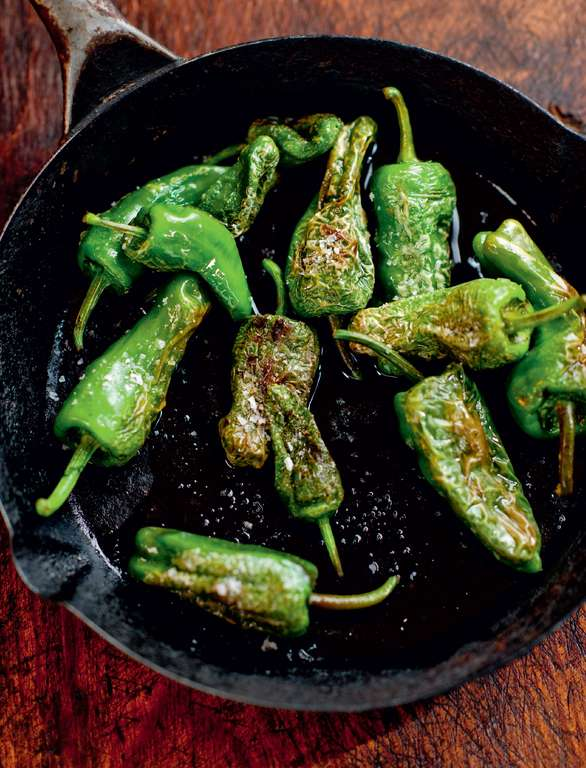 Olive-Oil Fried Baby Green Peppers (Pimientos de Padrón)